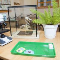 оборудования кабинета биологии